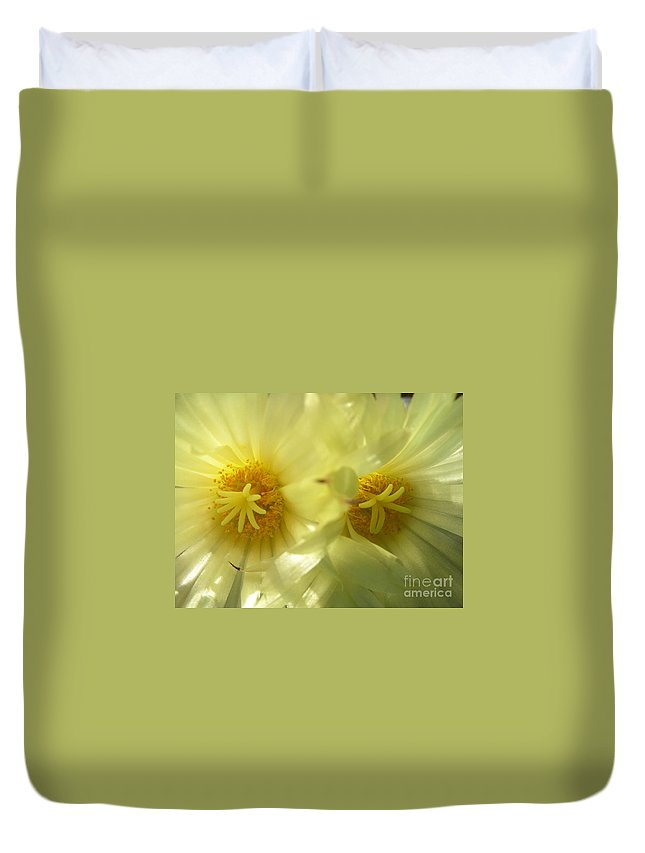 Cactus Duvet Cover featuring the photograph Cactus Flowers by Kerstin Ivarsson
