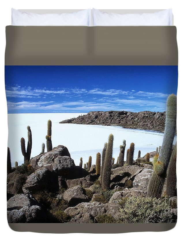 Salar De Uyuni Duvet Cover featuring the photograph Cactus Forest And Salar De Uyuni by James Brunker