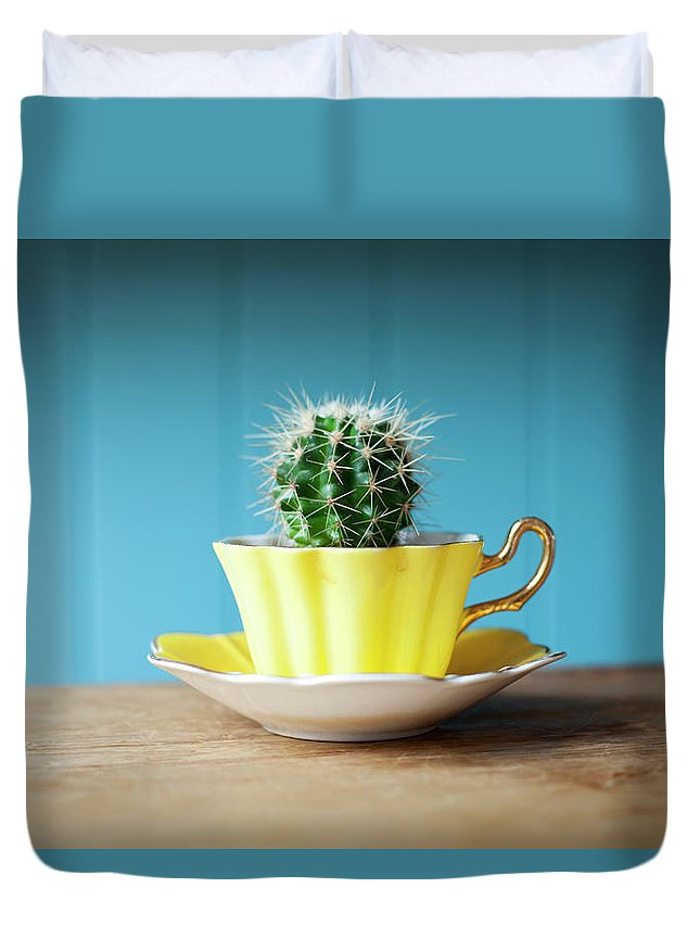 Risk Duvet Cover featuring the photograph Cactus Growing In Teacup On Desk by Ian Nolan
