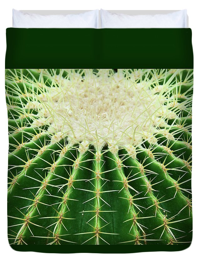 Sharp Duvet Cover featuring the photograph Cactus by Ithinksky