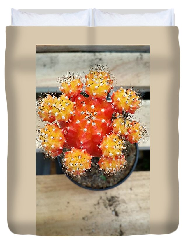 Still Life Duvet Cover featuring the photograph Cactus Orange by Mark Victors