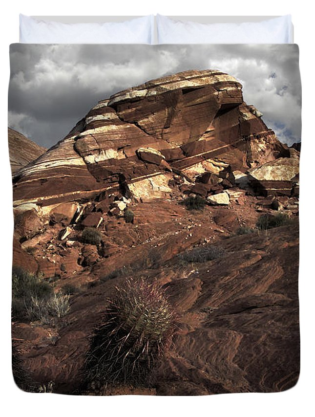 Cacti Duvet Cover featuring the photograph Cactus Pals by David Kehrli