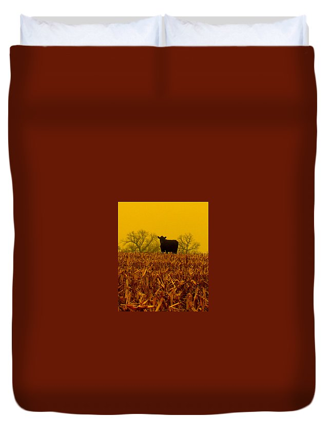 Cow Duvet Cover featuring the photograph Cafe Du Mais by Erin Rednour