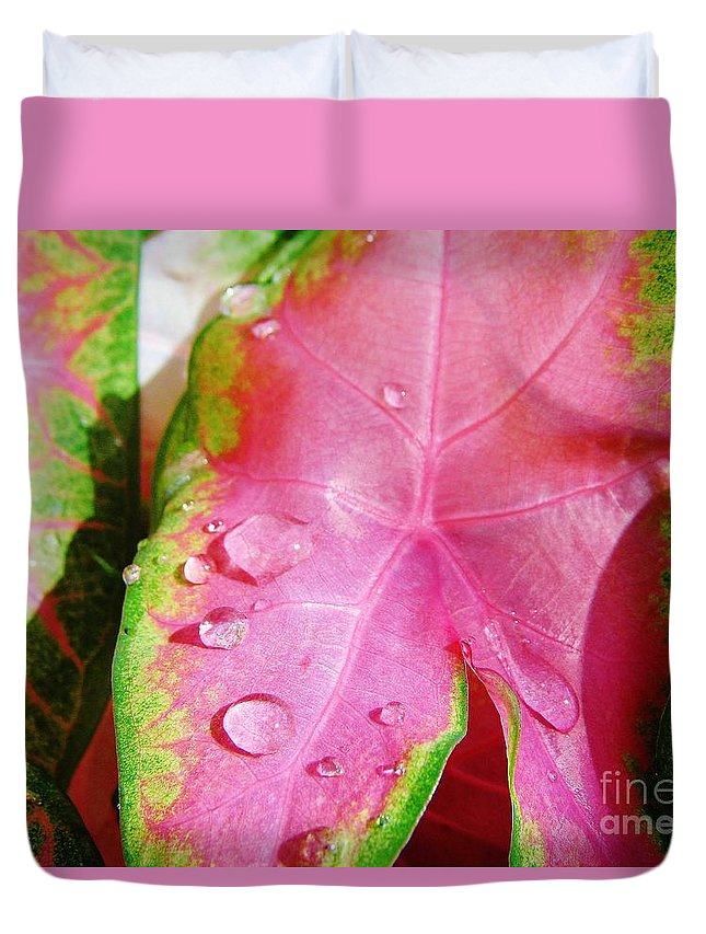 Colorful Duvet Cover featuring the photograph Caladium Leaf by D Hackett