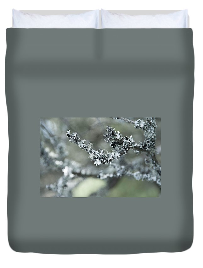 Abstract Duvet Cover featuring the photograph California Moss by Zina Zinchik