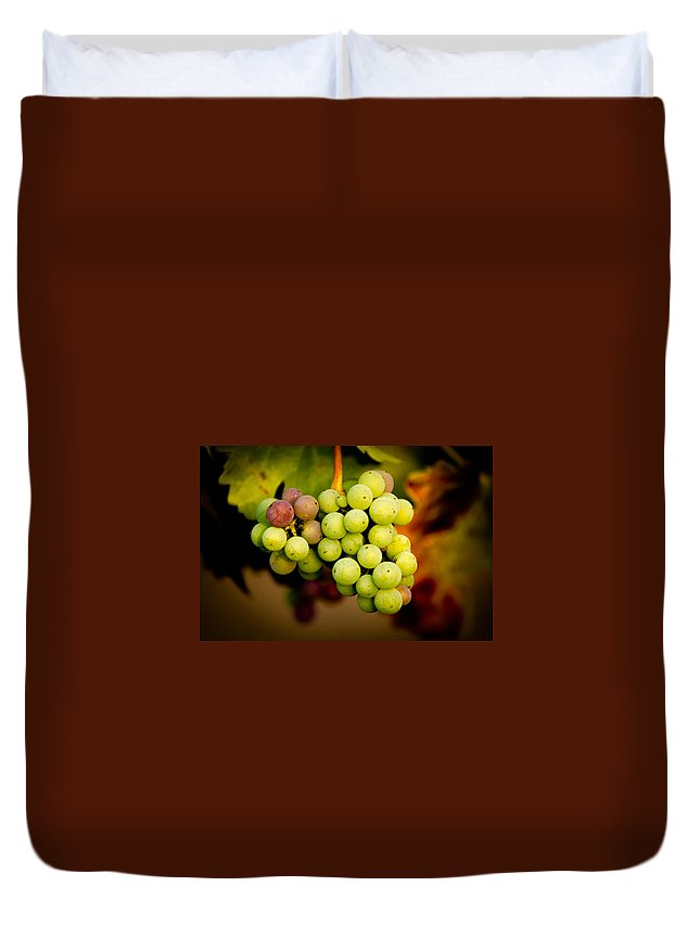 Grapes Duvet Cover featuring the photograph California Winery Grapes by Richard Cheski
