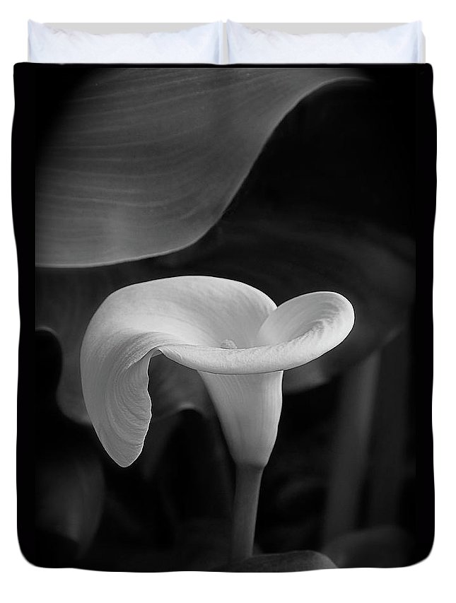Calla Lily Duvet Cover featuring the photograph Calla Lily In Black And White by Byron Varvarigos