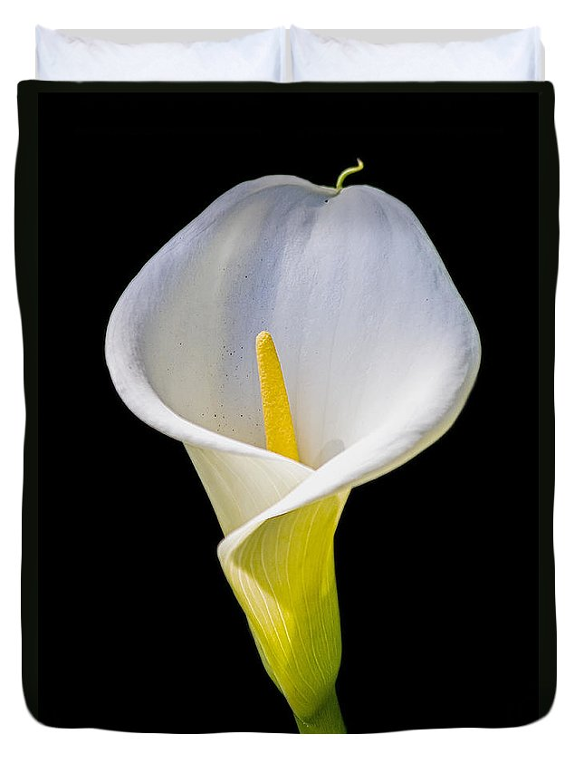 Calla Lily Duvet Cover featuring the photograph Calla Lily by Kate Brown