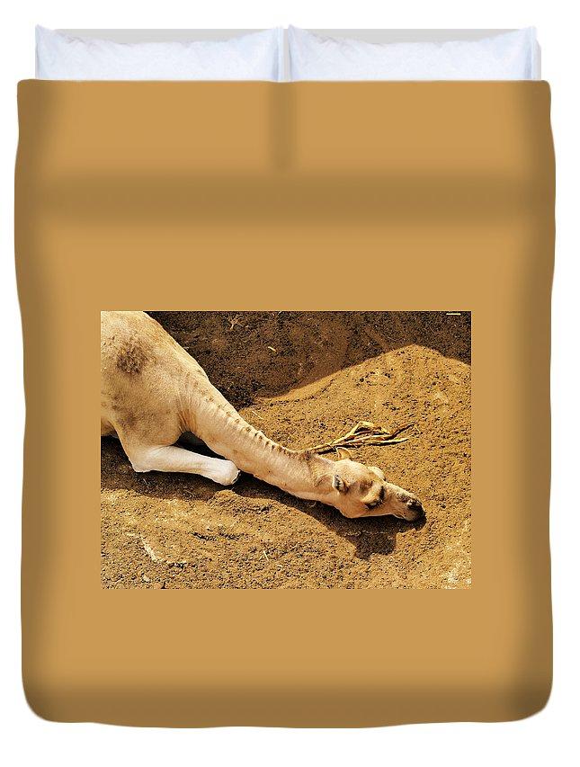 Camel Duvet Cover featuring the photograph Camel by Karol Kozlowski