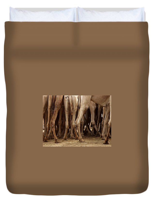 Camels Duvet Cover featuring the photograph Camel Legs by Carla P White