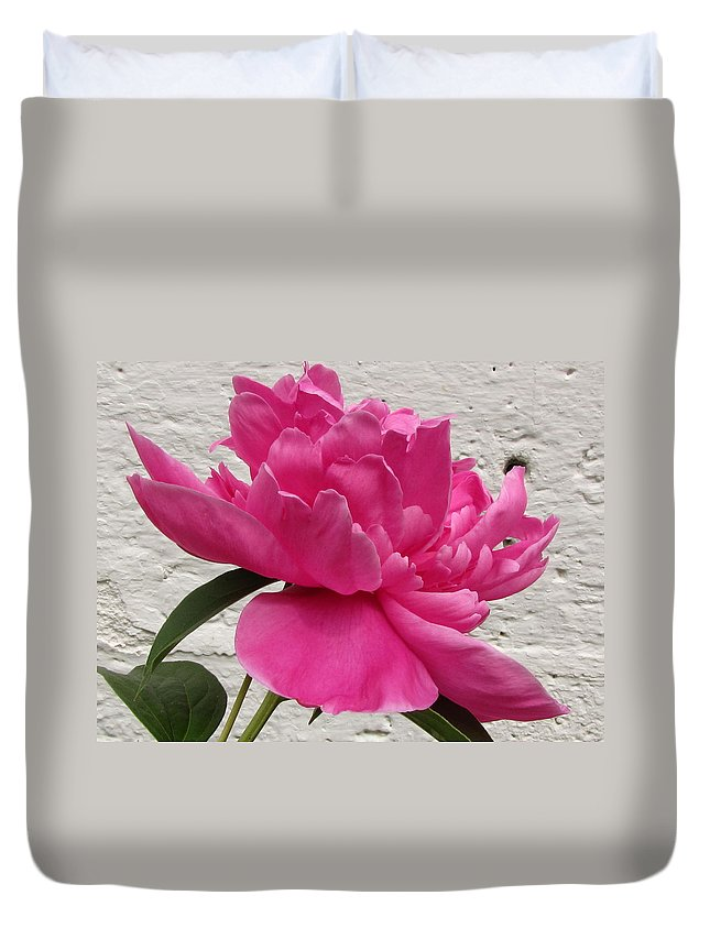 Camellia Duvet Cover featuring the photograph Camellia by Jennifer Wheatley Wolf