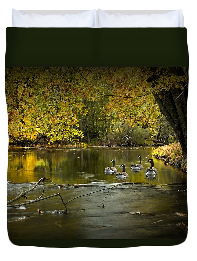 Canada Duvet Cover featuring the photograph Canada Geese In Autumn Swimming On The Thornapple River by Randall Nyhof