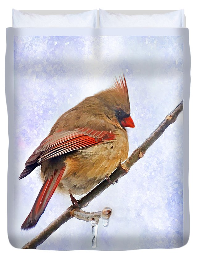 Bird Duvet Cover featuring the photograph Cardinal On An Icy Twig - Digital Paint by Debbie Portwood