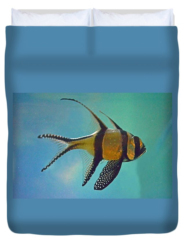 Cardinal Duvet Cover featuring the photograph Cardinalfish by Sandi OReilly