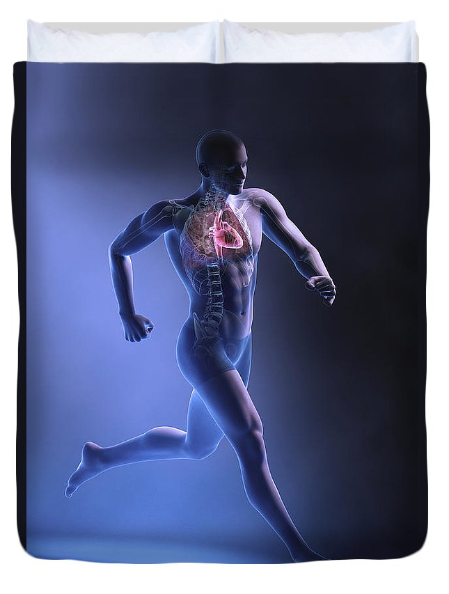 Circulation Duvet Cover featuring the photograph Cardiovascular Exercise by Science Picture Co