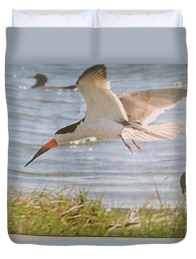 Bird Duvet Cover featuring the photograph Careful Plunge by Vandna Mehta