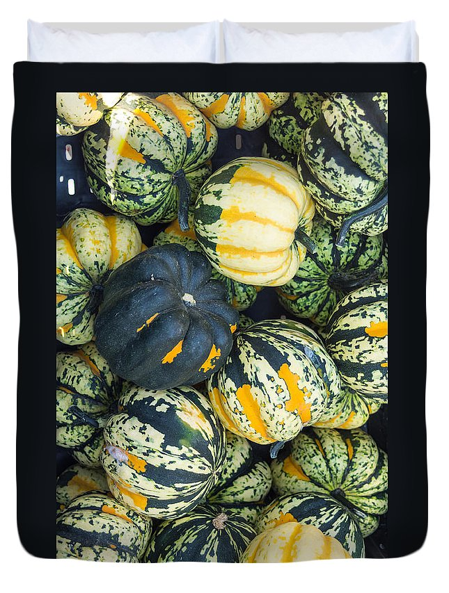 Agriculture Duvet Cover featuring the photograph Carnival Winter Squash At The Market by John Trax