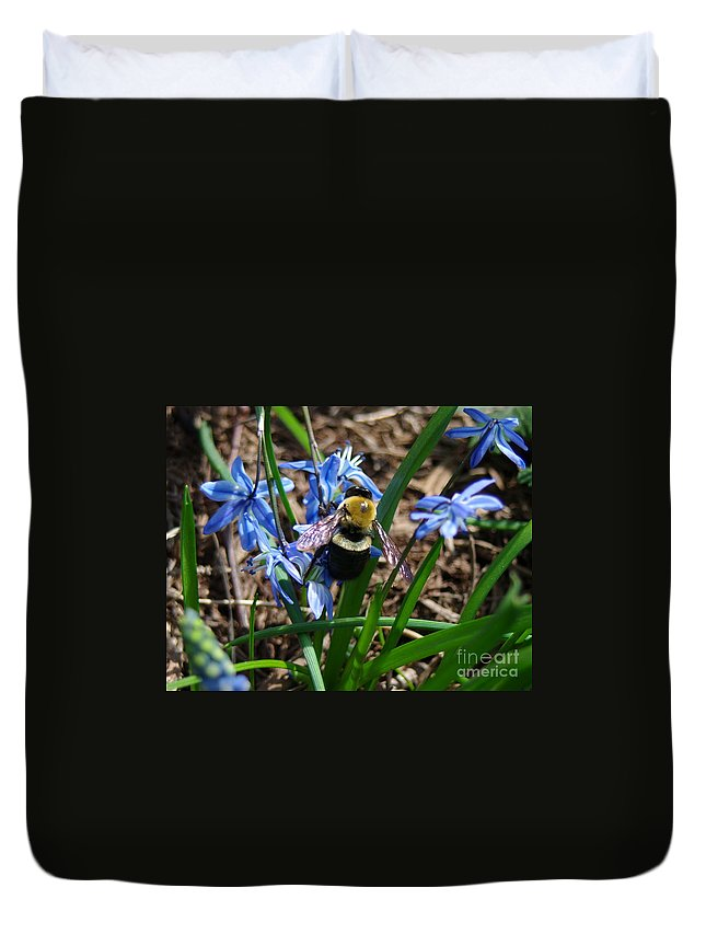 Carpenter Bee Duvet Cover featuring the photograph Carpenter by Kitrina Arbuckle
