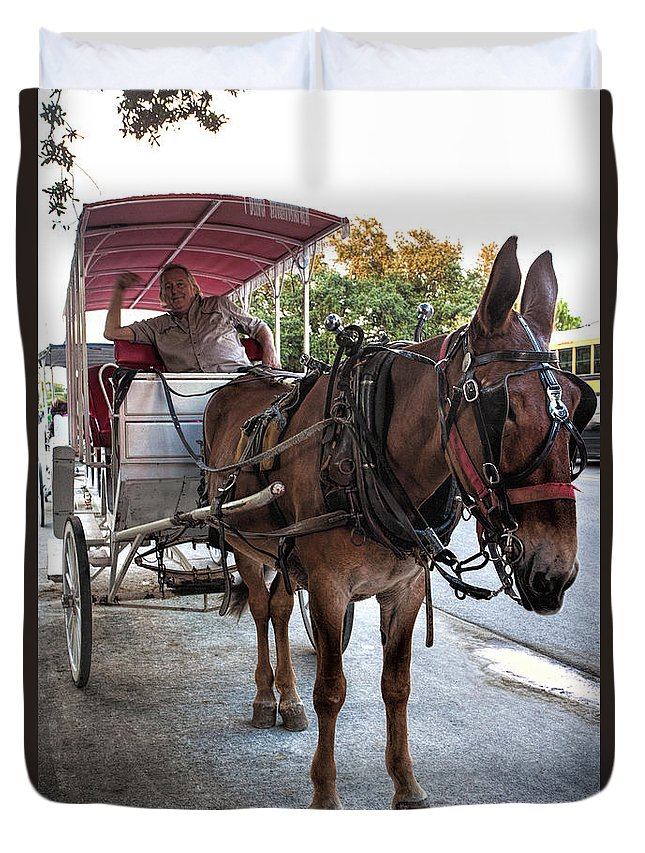 Jackson Square Duvet Cover featuring the photograph Carraige Ride by Diana Powell