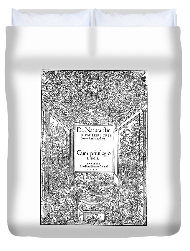 1536 Duvet Cover featuring the painting Cartouches, 1536 by Granger