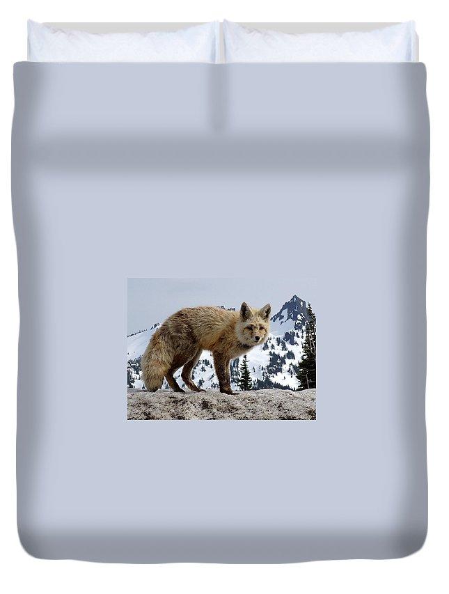 Cascade Red Fox Duvet Cover featuring the photograph Cascade Red Fox 1 by Peter Mooyman