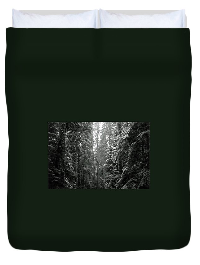 Snow Landscape Duvet Cover featuring the photograph Cascade Snow by Loren McNamara