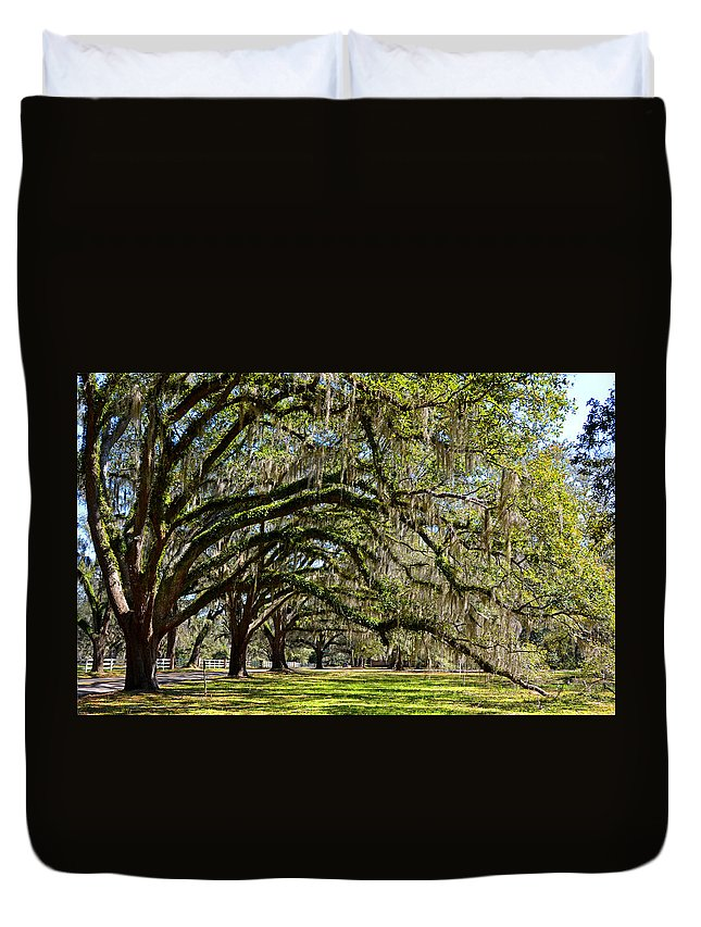 Live Oak Duvet Cover featuring the photograph Cascading Oaks by Carla Parris