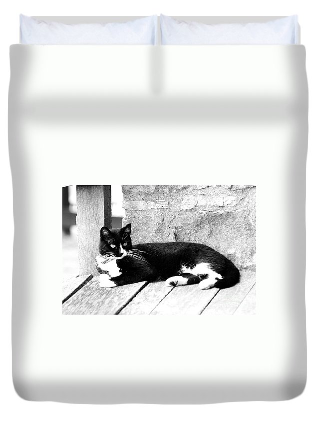 Cat Duvet Cover featuring the photograph Cat Black And White by Dwight Cook