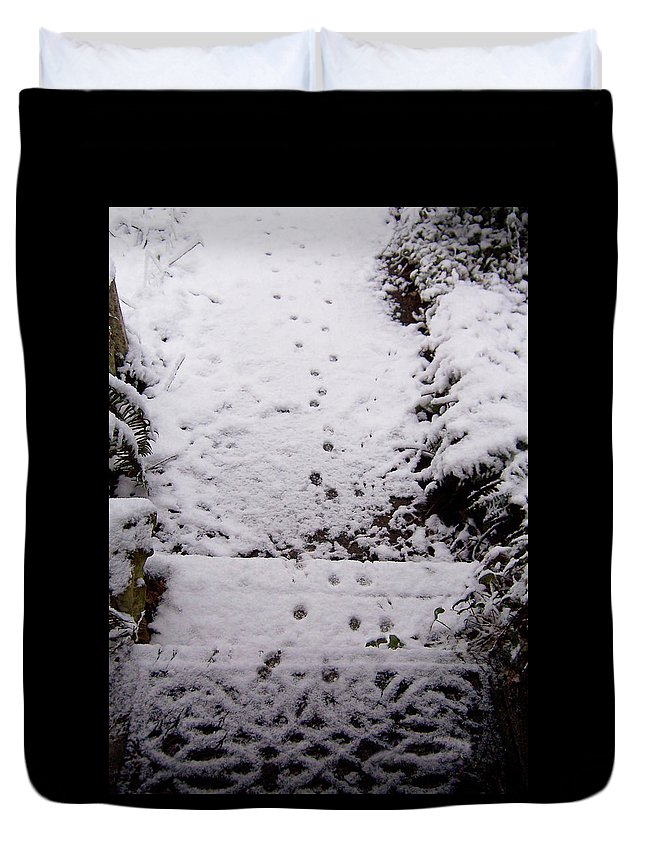 Cat Paws Duvet Cover featuring the photograph Cat Comes To Call by Blythe Ayne