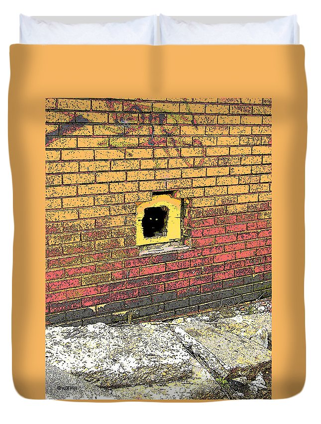 Cat Duvet Cover featuring the photograph Cat In A Hole In A Wall by Rebecca Korpita