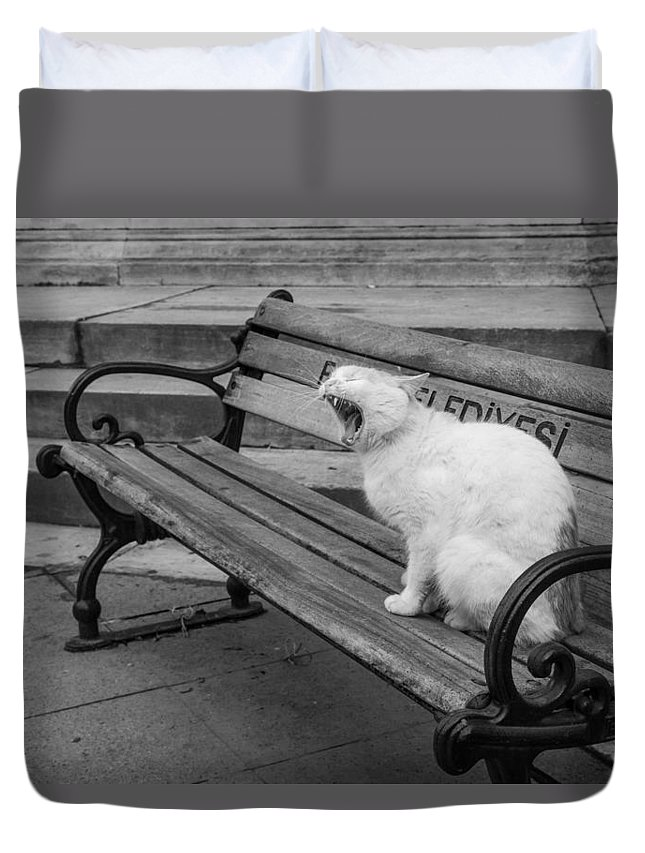 Cat Duvet Cover featuring the photograph Cat On A Bench by Shirley Radabaugh