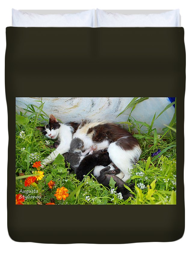 Augusta Stylianou Duvet Cover featuring the photograph Cat Suckling by Augusta Stylianou