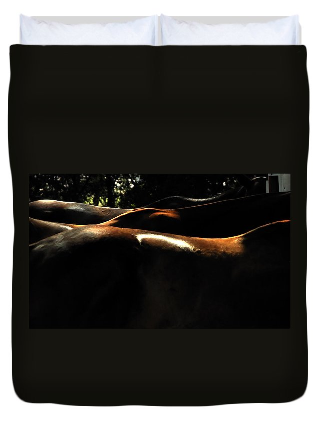 Transportation Duvet Cover featuring the photograph Catching Some Shade 17197 by Jerry Sodorff