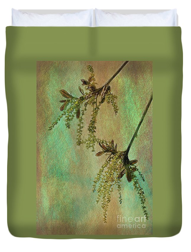 Catkins Duvet Cover featuring the photograph Catkins -- Tree-flowers by Judi Bagwell