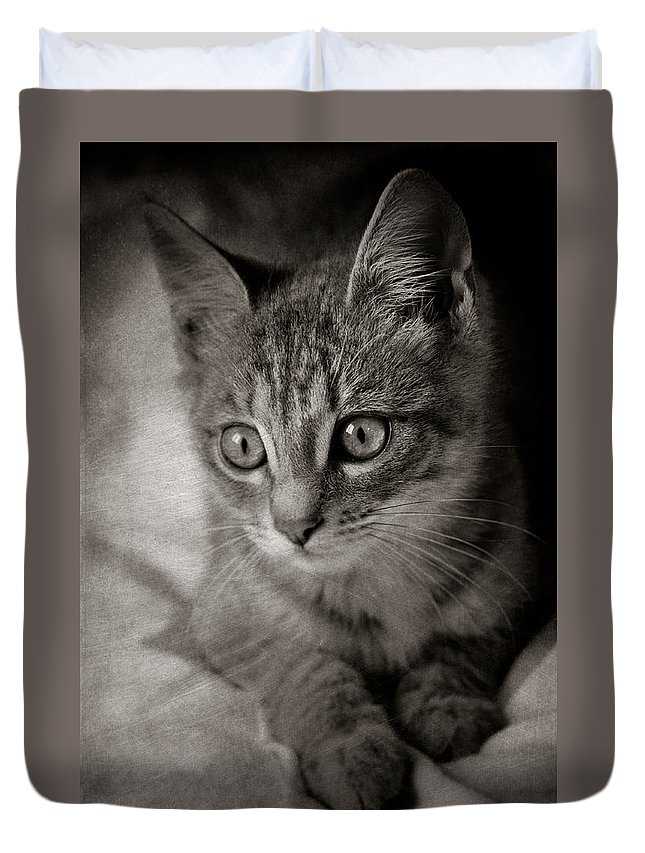 Loriental Duvet Cover featuring the photograph Cat's Eyes #05 by Loriental Photography