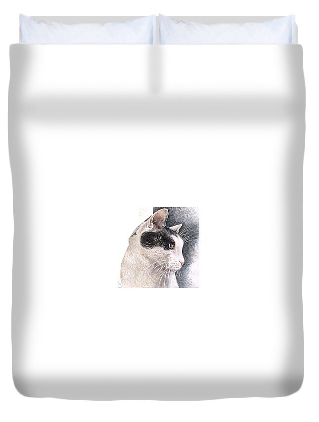 Cat Duvet Cover featuring the drawing Cats View by Nicole Zeug
