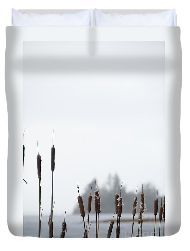 Cattails Duvet Cover featuring the photograph Cattails by Davina Parypa