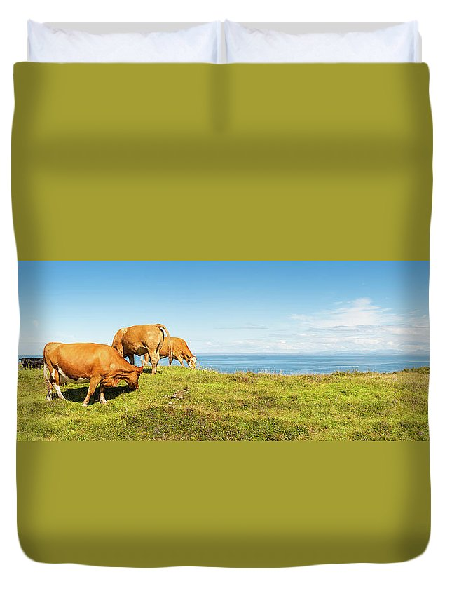 Water's Edge Duvet Cover featuring the photograph Cattle Grazing In Picturesque Meadow by Fotovoyager