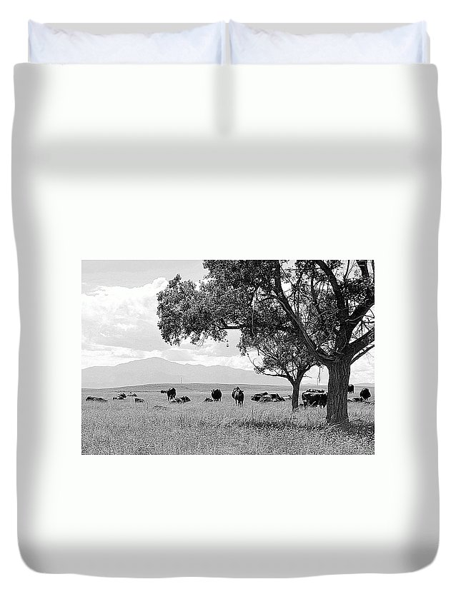 Pikes Peak Duvet Cover featuring the photograph Cattle Ranch In Summer by Clarice Lakota
