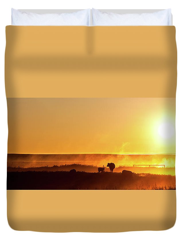 Scenics Duvet Cover featuring the photograph Cattle Silhouette Panorama by Imaginegolf