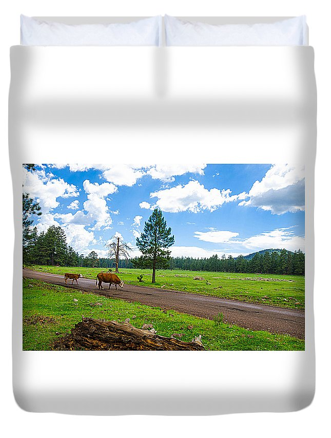 Cattle Duvet Cover featuring the photograph Cattles Roaming Through Hawley Lake Arizona by Michael Moriarty