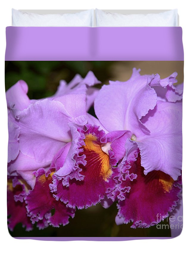 Orchid Duvet Cover featuring the photograph Cattleya Lavender Valentine by Terri Winkler