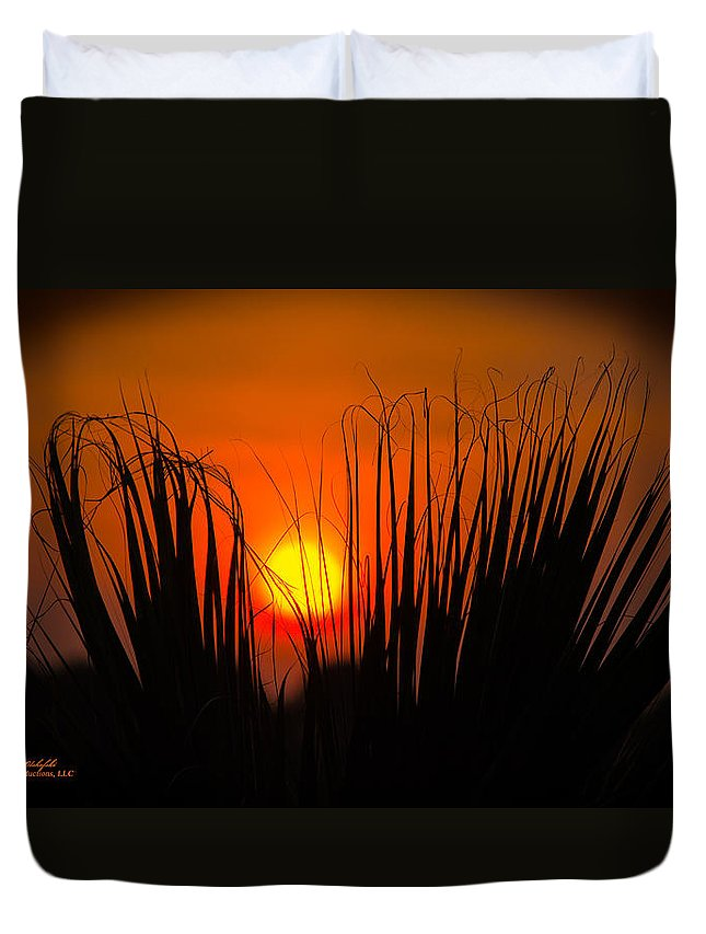 Navarre Duvet Cover featuring the photograph Cayo Grande Palm Tree Sunrise by Mark Olshefski