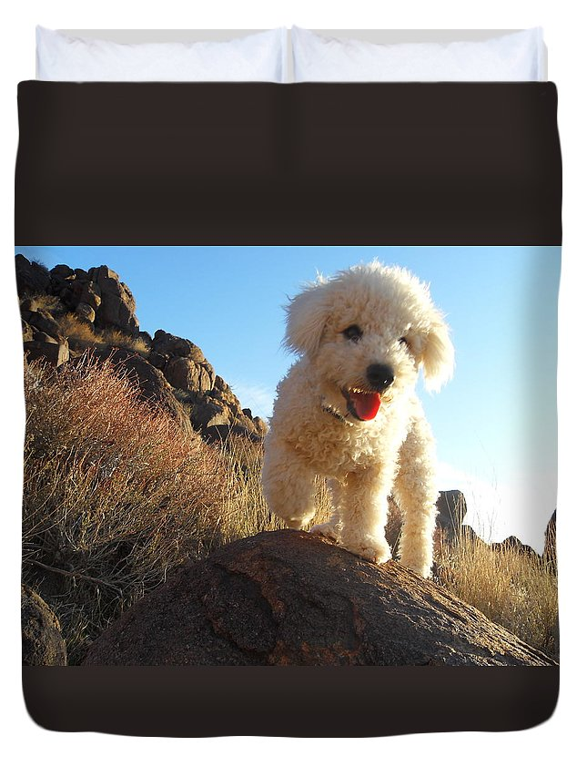 Portrait Duvet Cover featuring the photograph Ceaser by James Welch