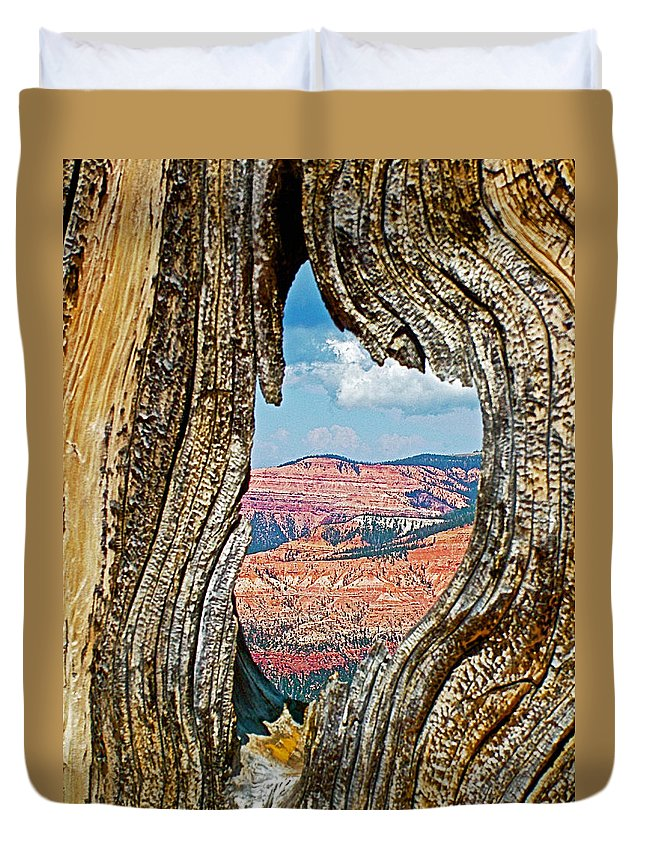 Cedar Breaks Through Bristlecone Pine On Ramparts Trail In Cedar Breaks National Monument Duvet Cover featuring the photograph Cedar Breaks Through Bristlecone Pine On Ramparts Trail In Cedar Breaks National Monument-utah by Ruth Hager