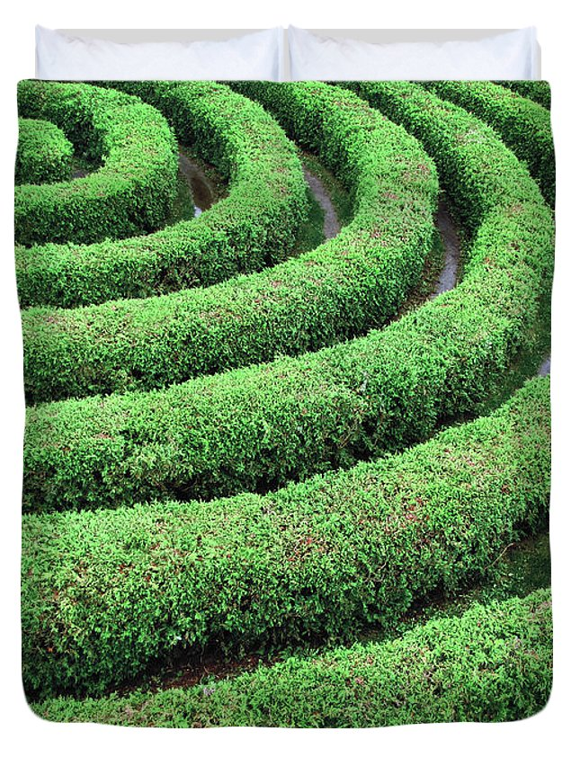 Tranquility Duvet Cover featuring the photograph Cedar Maze by Francois Dion