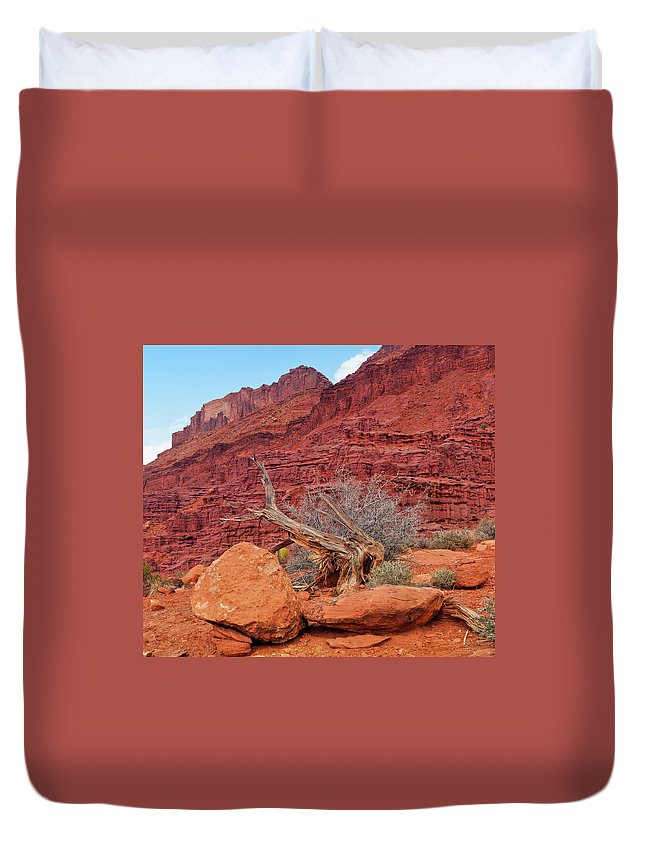 Cedar Tree Duvet Cover featuring the photograph Cedar Wood Tree, Fisher Towers, Moab by Fotomonkee
