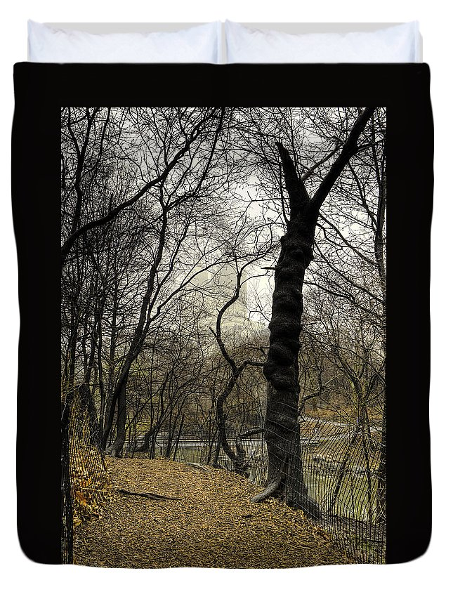 Central Park Duvet Cover featuring the photograph Central Park Rainy Day Number Three by Kenneth Ortiz