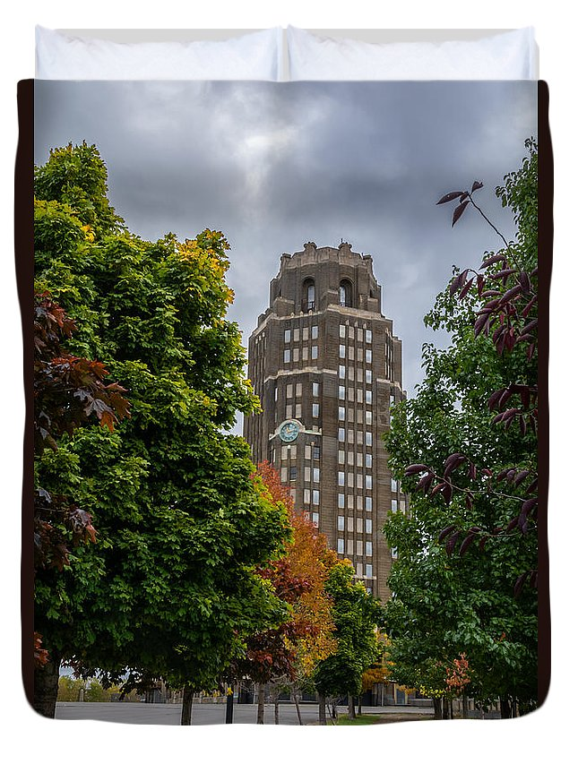 Buffalo Duvet Cover featuring the photograph Central Terminal 7k03051 by Guy Whiteley