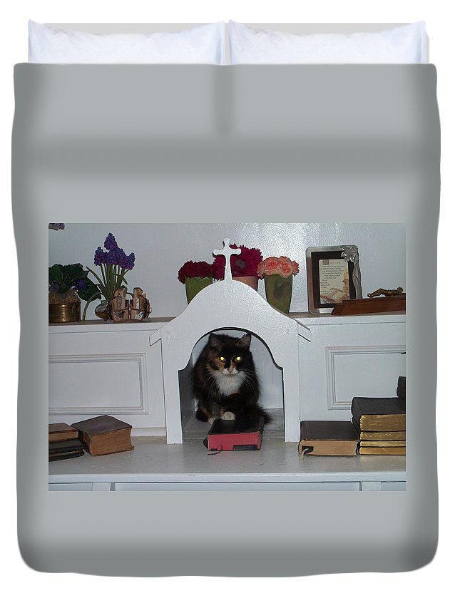 Cat Duvet Cover featuring the photograph Chapel by Erika Chamberlin